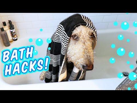 Goldendoodle gets a Bath! 💦 How to Bathe a Dog, + Fav Shampoo!