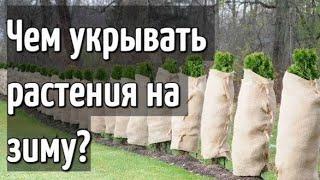 Чем укрывать растения на зиму? - Самые лучшие и эффективные материалы!