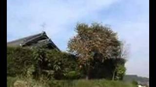 秋の田園風景、萩の花.