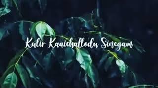 Adai mazhai varum athil nenaivomea song lyrics