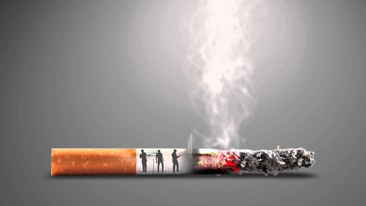 Сигареты таволга заказать штраф за продажу табачных изделий несовершеннолетнему