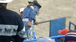 Video La muerte de un grande la Sombra de Huandacareo vs el Toro el Anticristo de Rancho El Guamuchil 😪 download MP3, 3GP, MP4, WEBM, AVI, FLV Januari 2018