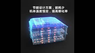 병아리부화기 부화기 가정용 인큐베이터 기계 자동 병아리