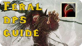 6.2 Feral Druid PvE DPS Guide
