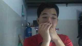 Cần Lắm - Trà My Idol ft. Hoàng Rapper - Harmonica Cover