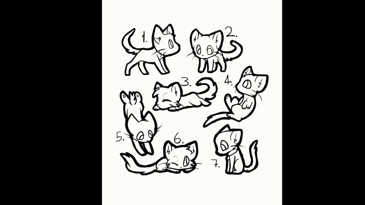 Картинки кого куда коты