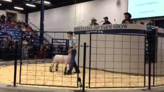Raw video: Farm show auction