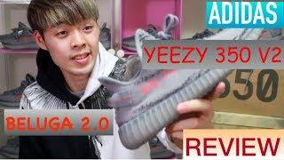 原價抽中機率最高的Yeezy?開箱adidas Yeezy Boost 350 V2 Beluga 2.0|XiaoMa小馬