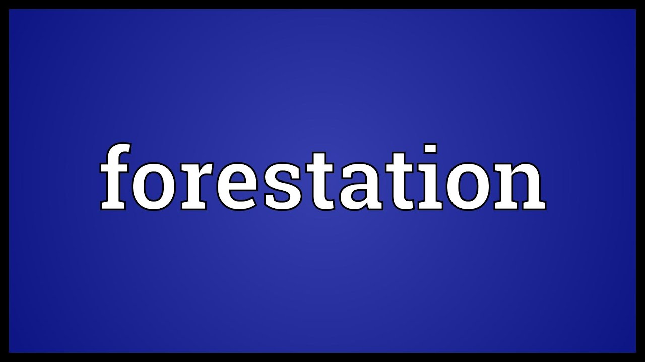 Deforestation can involve conversion of forest land to farms, ranches, or urban use. Forestation Meaning Youtube