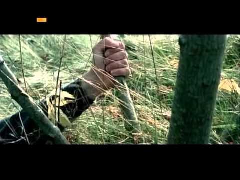 Monsterland (Documental de Jörg Buttgereit) 2008