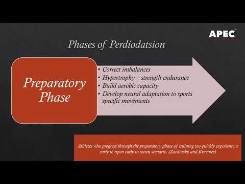 Periodization For Sports Performance