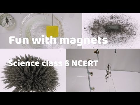 Cbse class 6 science fun with magnets notes