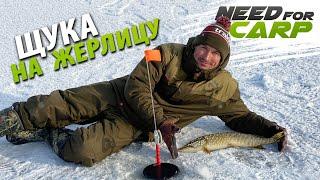 Ловим щуку на жерлицы Рыбалка в 20