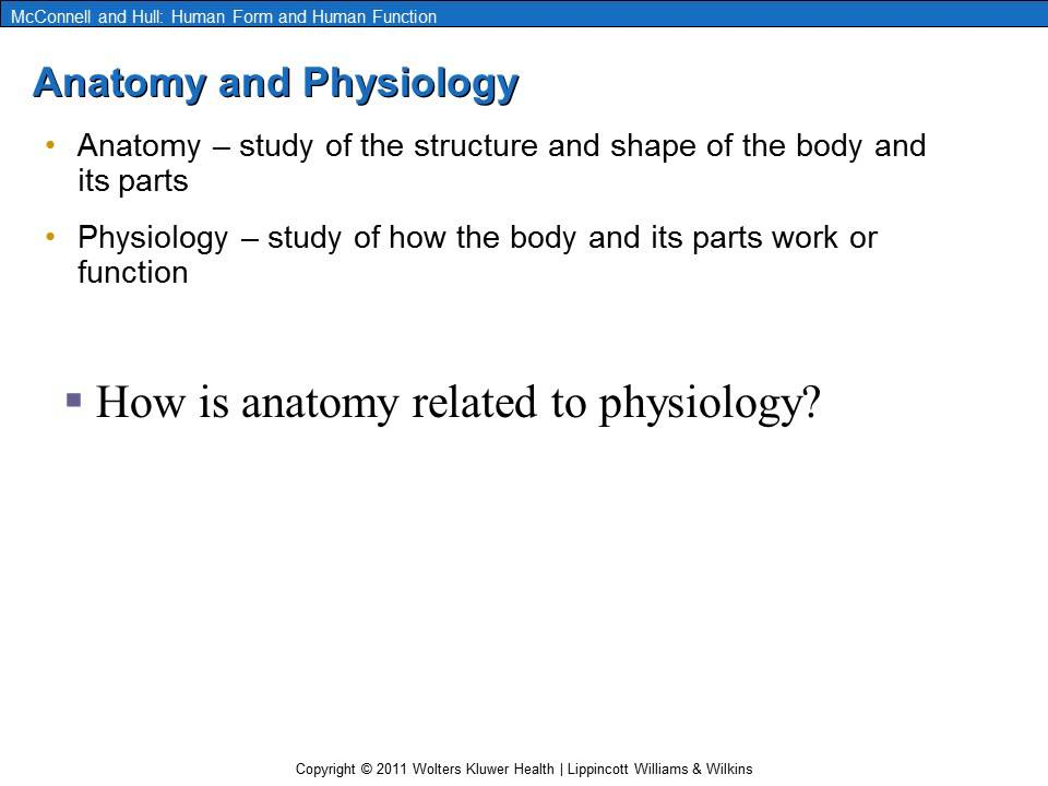 Anatomy, Physiology and How They are Related - YouTube