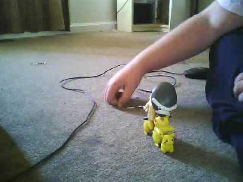 pokemon randomnnes