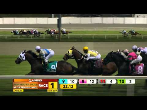Meadowlands October 18, 2014 - Race 1 - Lucky Year