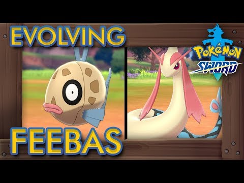 Pokémon Sword & Shield - How to Evolve Feebas into Milotic
