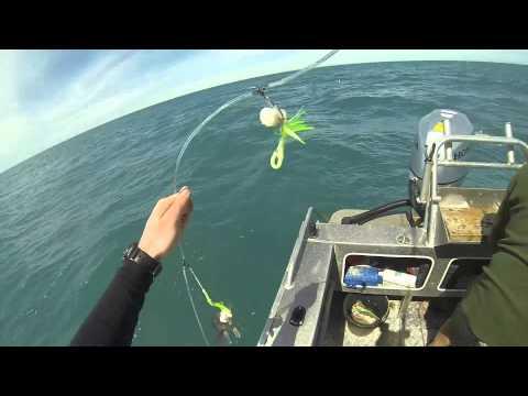 Motunau Fishing