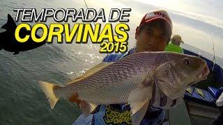 Dica para pesca de Corvinas (Guarujá / SP)