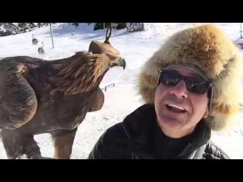 Golden Eagle Meet & Greet In Kazakhstan