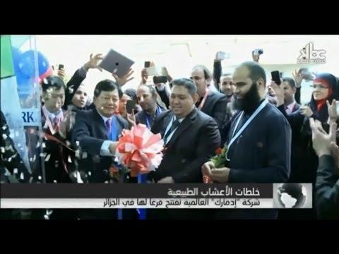 KBC TV - Edmark Algeria's Grand Opening 2014