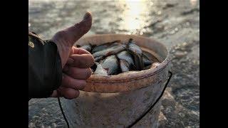 Рыбалка в Астрахани! Отвели Душу! А что ещё для Счастья надо?