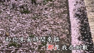 黃思婷滿天星 KTV 字幕
