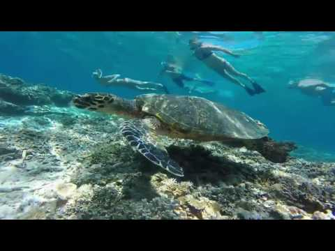 Snorkelingtrip Gili`s, Indonesia