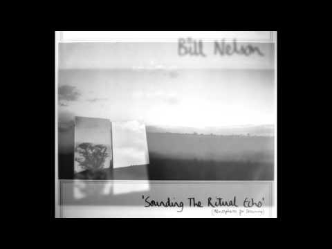 Bill Nelson - My Intricate Image (1981)