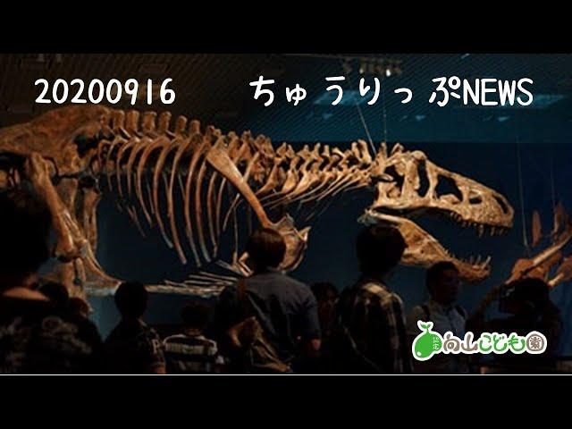 20200916 ちゅうりっぷ 恐竜