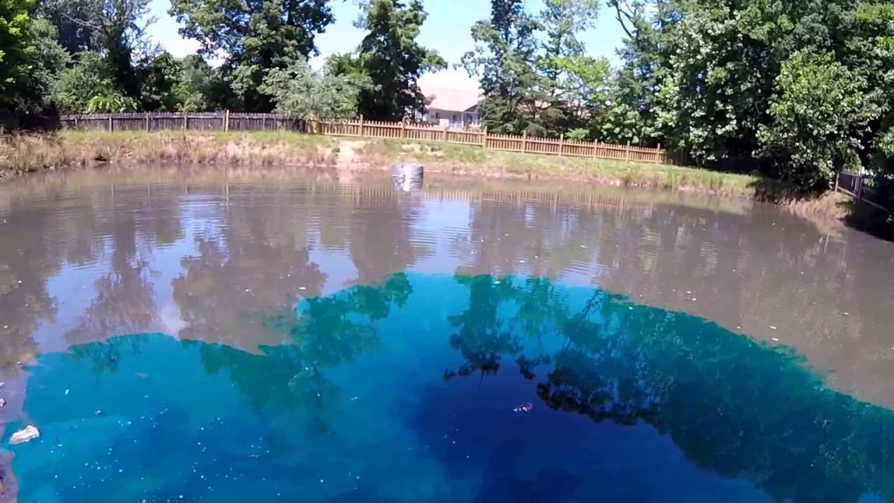 Twilight In Koi Pond >> How To Control Pond Algae With Aquatic Dye