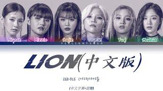 [中字字幕+認聲] (G)I-DLE((여자)아이들)'LION(CHI. ver)(中文版)' Color Coded Lyrics