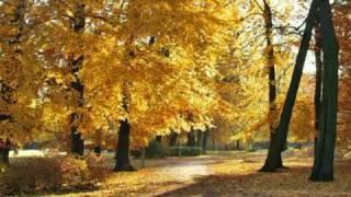 Розенбаум Осень