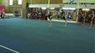 Художественная гимнастика Владивосток 20.04.12
