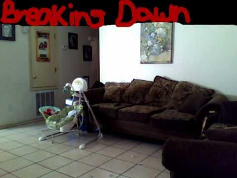 Twilight Sagabreaking Dawnvampire Sucks My Version