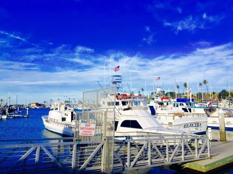 San Diego Fishing Group (6) - 01/02/2016 賞鯨活動