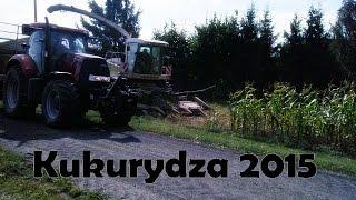 ☆Wspomnienie Jesieni☆ Koszenie kukurydzy 2015㋡ 2 gospodarzy ,3 sieczkarnie,13 ciągników !