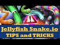 Slither.io #1 - Tips and Tricks to get first FAST!!
