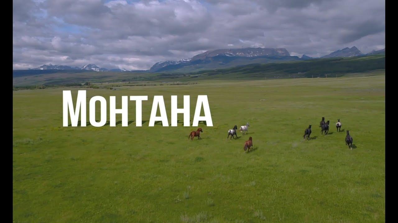 Туристическое Путешествие в Сша |