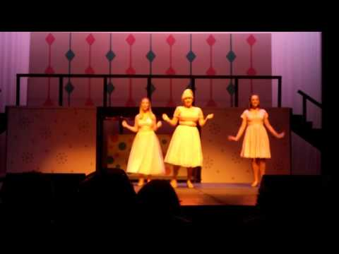 SRPA Hairspray 2017 - The New Girl In Town