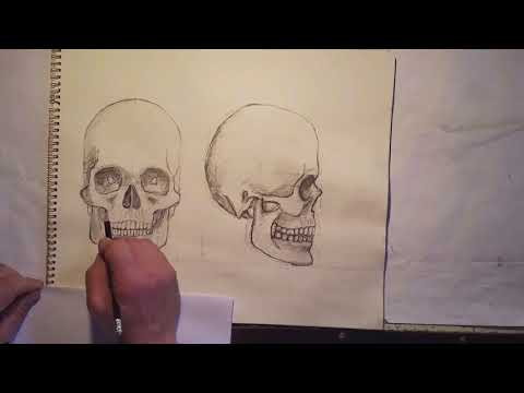 Huge Carved wooden skull