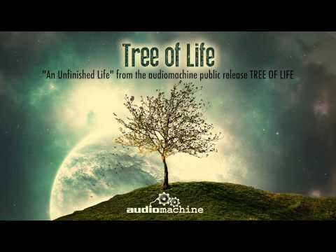 Audiomachine - An Unfinished Life music