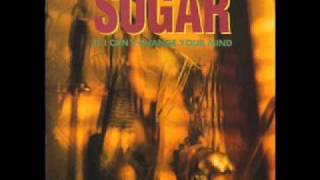 Watch Sugar Anyone video