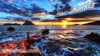 """Zee Bries"" ♫ 