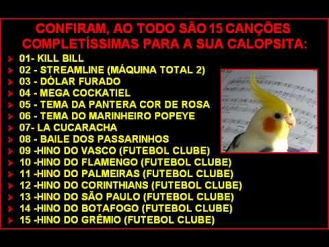 PARA CALOPSITAS DE BAIXAR CD CANTO