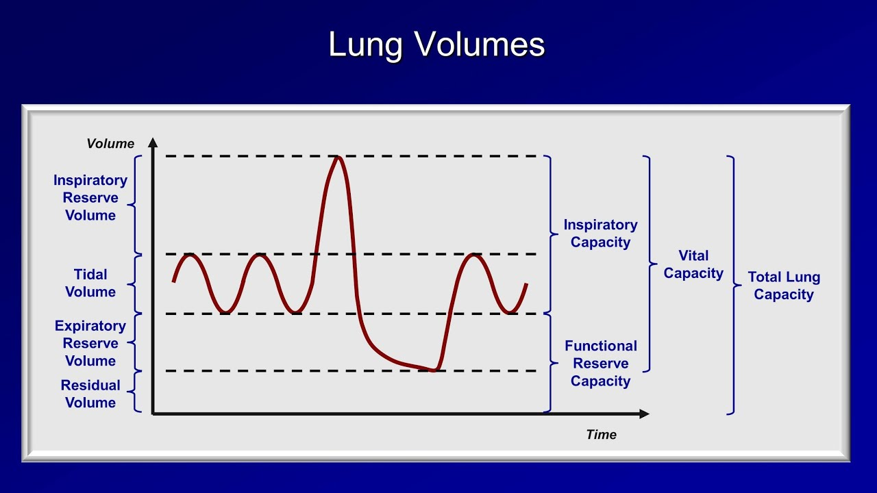 Pulmonary Function Tests Pft Lesson 1 An Introduction Youtube