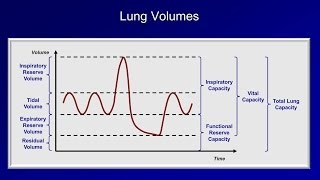 Pulmonary Function Tests (PFT): Lesson 1 - An Introduction