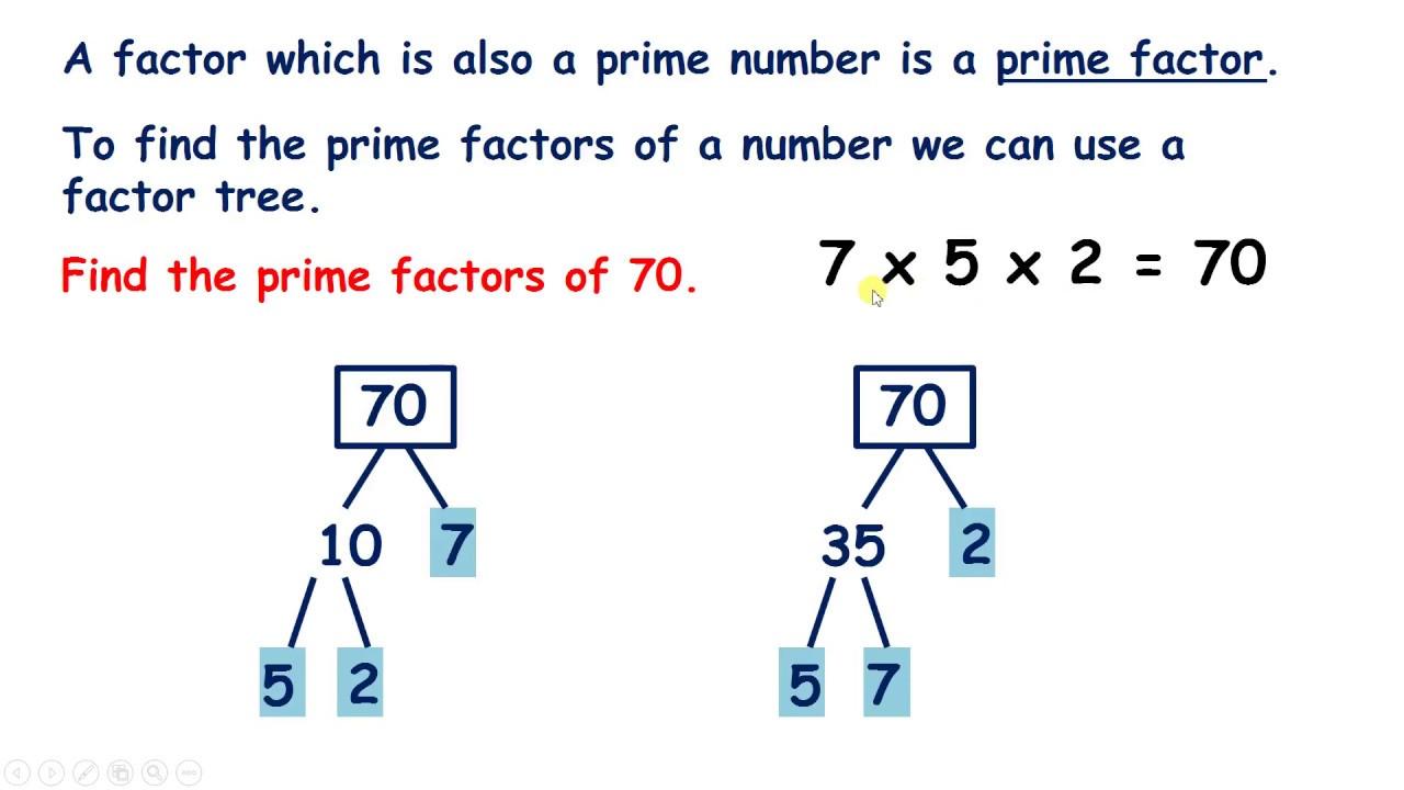 Worksheet Prime Factor Trees Worksheet Worksheet Fun Worksheet