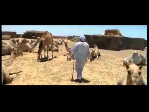 وثائقى 4 دقايق   حلايب وشلاتين كما لم تراها من قبل