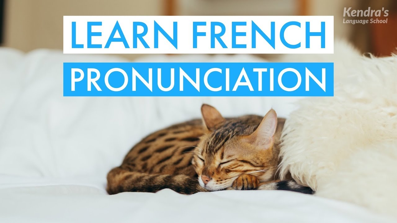 how to learn basic french online
